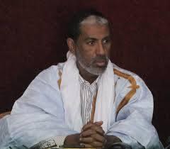 الدكتور الشيخ ولد الزين ولد الامام