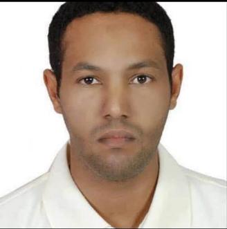 المهندس /  محمد محمود الكوار