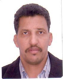 الاستاذ الدكتور محمد ولد الرباني