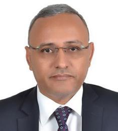 السيد/  محمد فال التلميدي