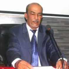 الخبير الإقتصادي الدولي الدكتور محمد ولد محمد الحسن