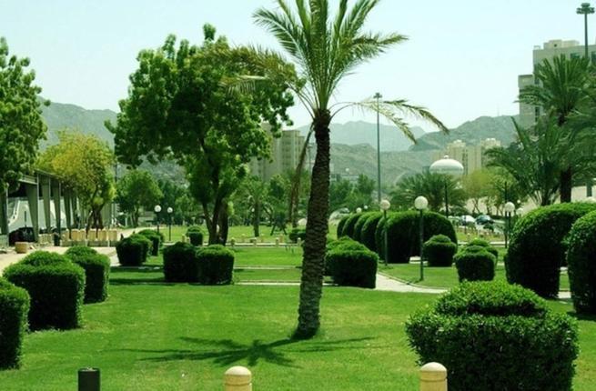 مكة تقدم خدمة إنترنت مجاني